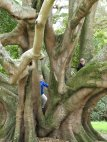 Pippa and Rowan, Albert Park