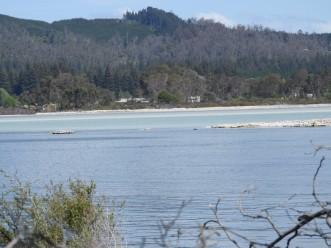 Sulphur point, Lake Rotorua