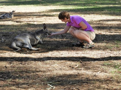 Mom fedding a kangarooo